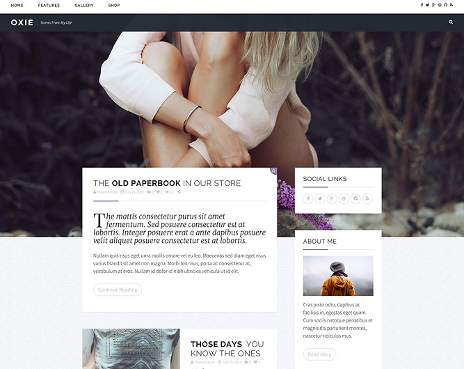 Oxie Responsive WordPress Theme